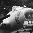 B17 Bomber by WTBird