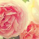 Loves Whisper by ameliakayphotog