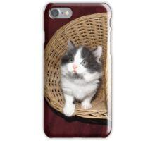Kittens in a basket iPhone Case/Skin