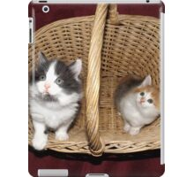 Kittens in a basket iPad Case/Skin