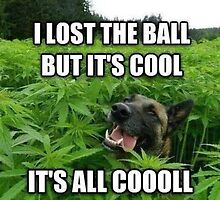 Dog weed German lost the ball by Royalcollector