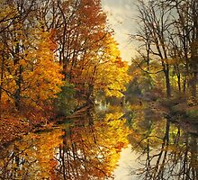 Golden Reflections by Jessica Jenney