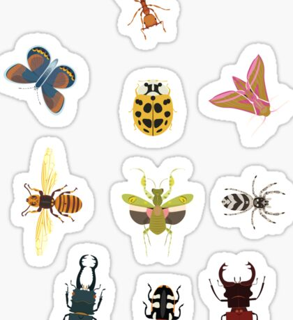 Insect stickers Sticker