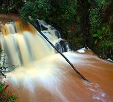 """Lilydale Falls @ 18mm"" by Husky"