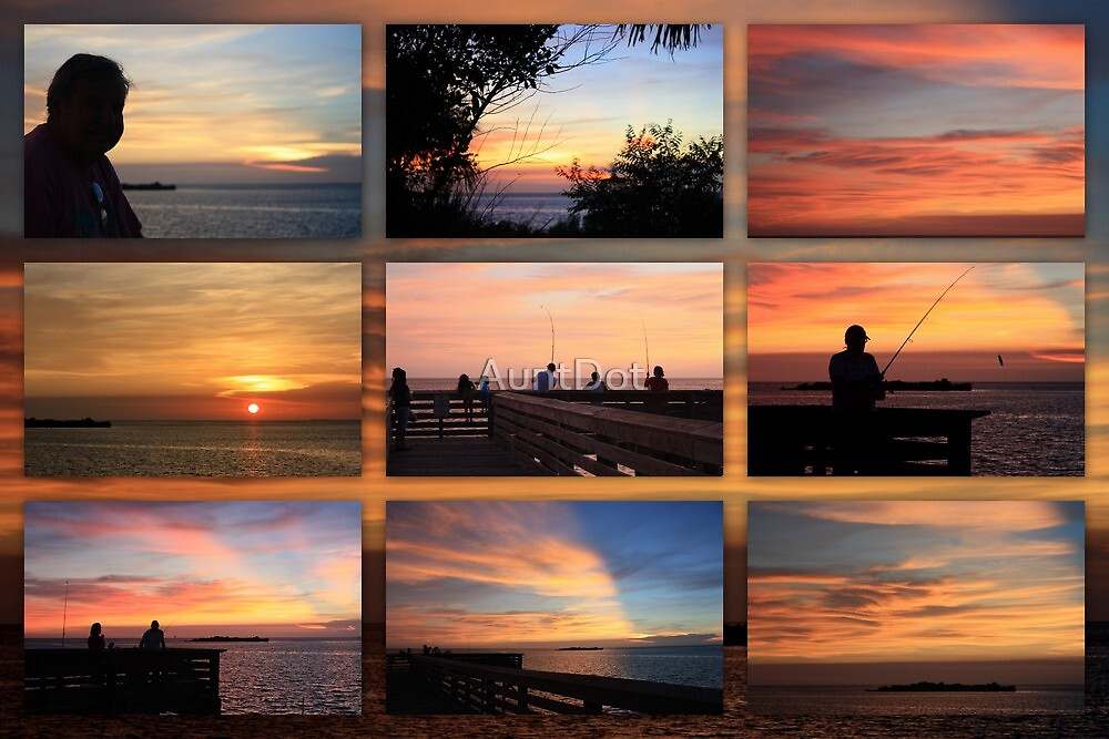 Sunset On the Gulf ~ The Best Of the Rest  by AuntDot