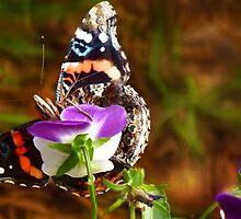 Bashful Beauty by Nadya Johnson