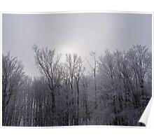 Christmas Snow 2009 Upstate NY Poster