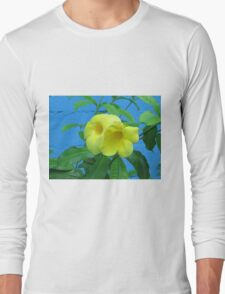 Blue Wall and Yellow Flowers Long Sleeve T-Shirt