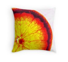 Dissection of Flavour Throw Pillow