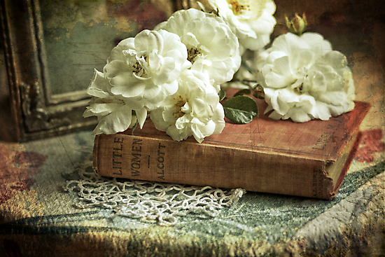 Antique white roses by SylviaCook