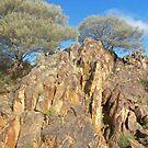 Desert views..... Broken Hill by Juilee  Pryor
