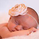 sweet dreams ................ by deborah brandon