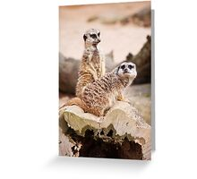 Paranoid - do you think someone is watching us Greeting Card