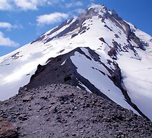 I think I can touch the top of Mt Hood by Don Siebel