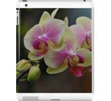 Orchids in Bloom iPad Case/Skin