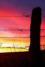 Sunset Post by kurrawinya