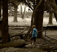 Little Boy Blue Lost in the Woods by kael