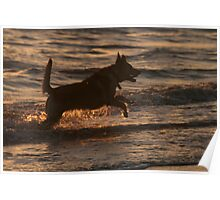 Playtime at Sunset Poster