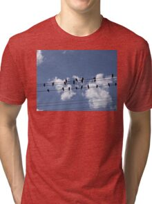 46 Birds On A Wire Tri-blend T-Shirt