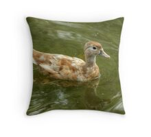 Wood Duck...(Champagne or Buff) Throw Pillow