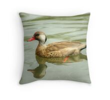 Drake Brazilian Teal  Throw Pillow