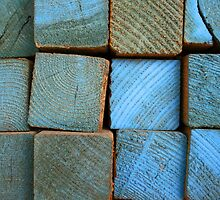square blue by Lynne Prestebak