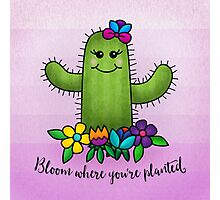 Bloom Where You're Planted Photographic Print