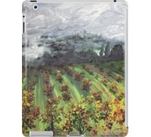 Old Rossi Place iPad Case/Skin