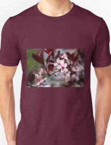 Purple Sandcherry T-Shirt