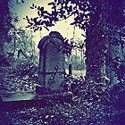 Cemetery Secrets by Aj Finan