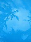 Blue Palm by John Douglas