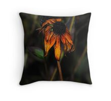 As Time Moves-.... Throw Pillow