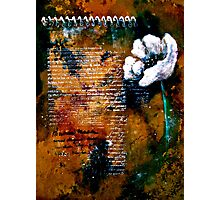 The Poppy Journals...Ars Longa Vita Brevis Photographic Print