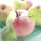 Summer apples 2 by aMOONy