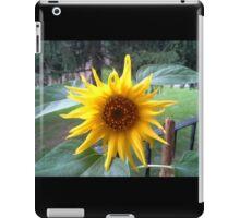 NEW BORN SUNFLOWER iPad Case/Skin