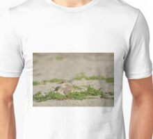 Snowy Plover Chick with Mom, As Is Unisex T-Shirt