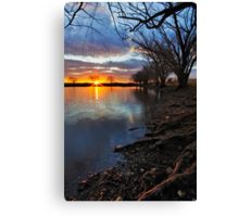 at the Willow's edge Canvas Print