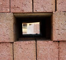 Through the brick wall by NicholasB