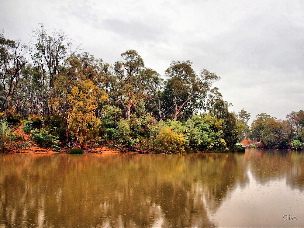 Along the Murray by Clive