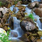 Roadside Cascades by Bill Hendricks