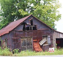 HOUSE FOR SALE ~ NEEDS REPAIR by Pauline Evans