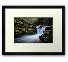 Vancampen Brook in Autumn Framed Print