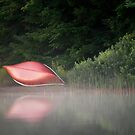 Red Canoe in the Mist by Laura Cooper