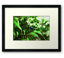 Unnatural Blue Lady Framed Print