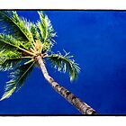 Blue Palms - Hawaiian Tropical Sky by Ramon Vrielink