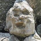 rock face by Leeanne Middleton