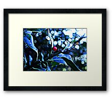 Girl Holly Framed Print