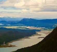 Mount Thomas View, Juneau, Alaska by Barbara  Brown