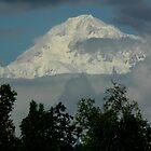 Mt.McKinley by Margaret  Shark