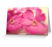 *Pink Weeds* ~ The Orton Effect ~ Greeting Card